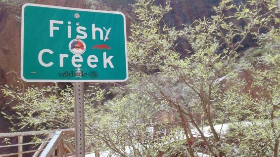FishCreek1