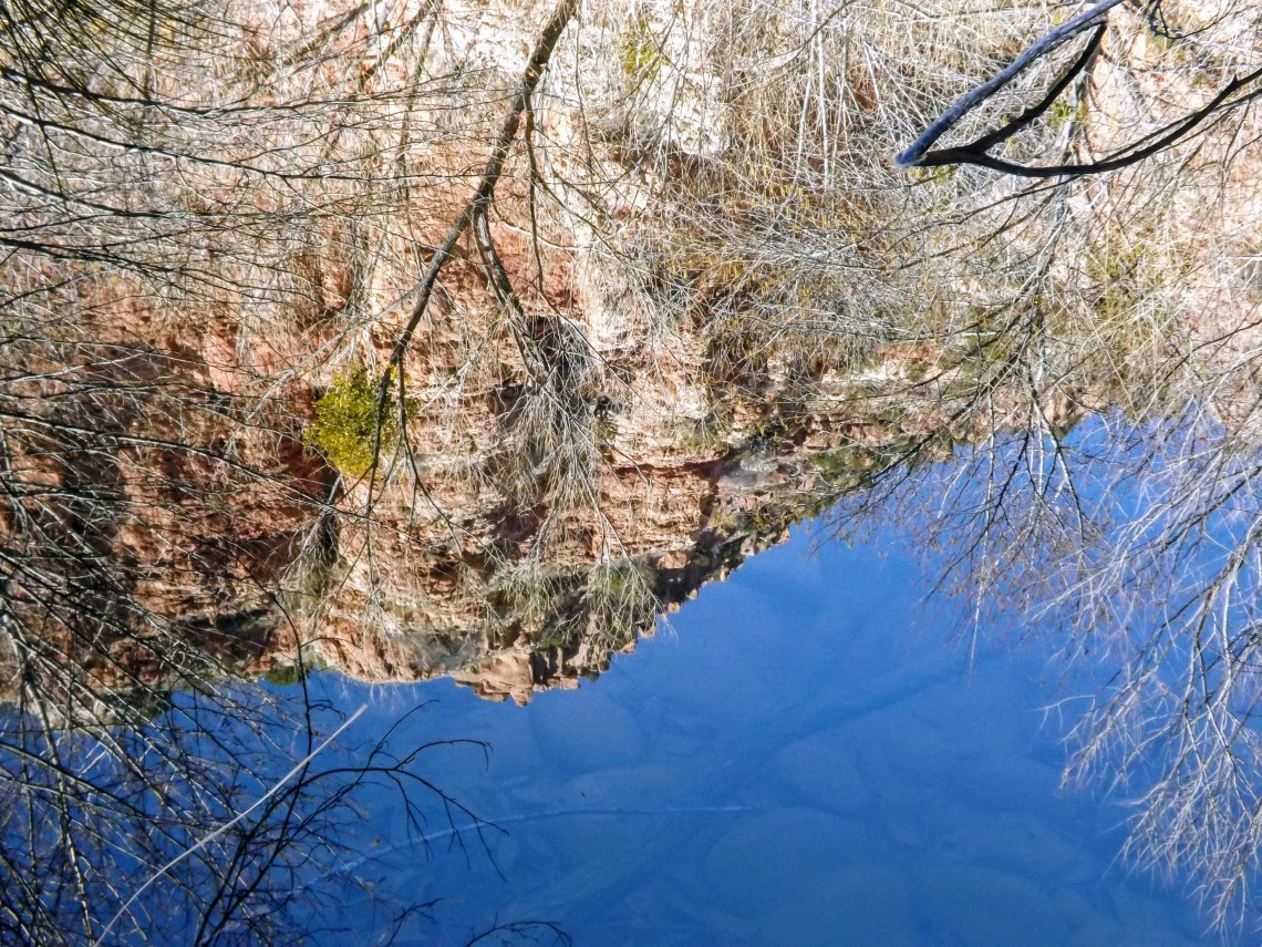 reflection of Sycamore Canyon wall on the creek