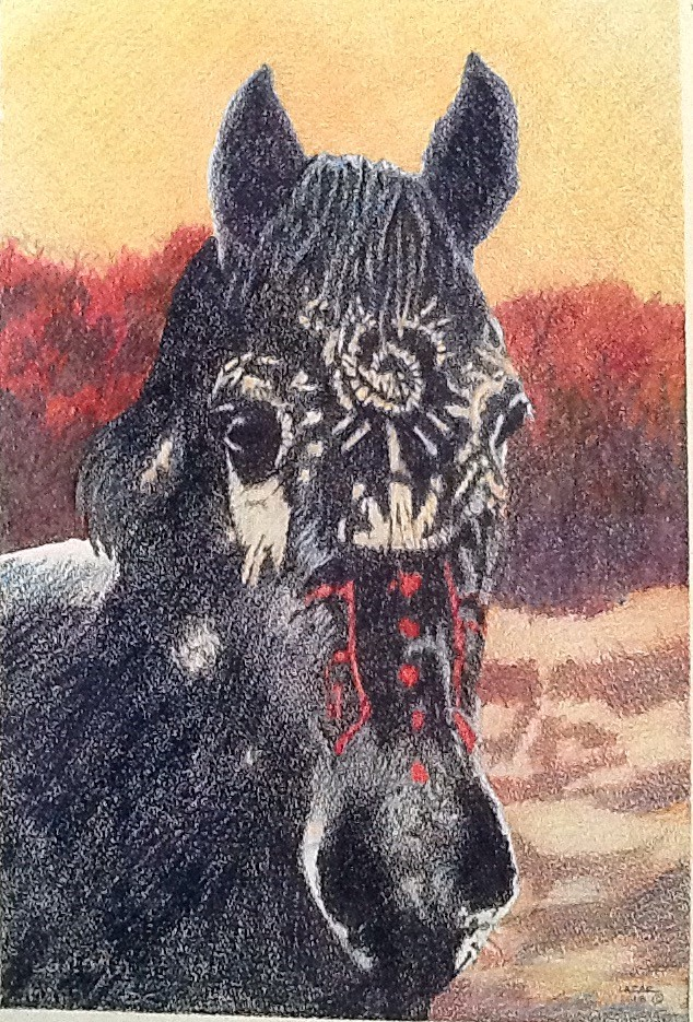 """War Horse"" color pencil"