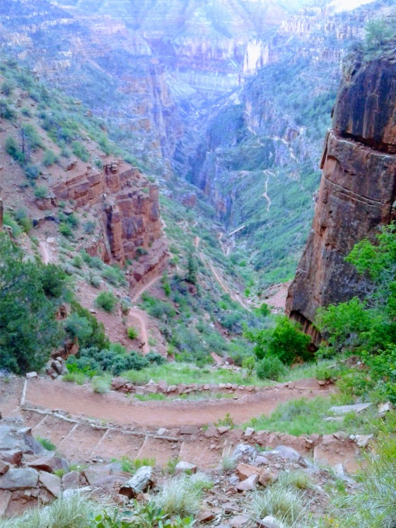 View of hiking trail winding through lush green foliage in Grand Canyon