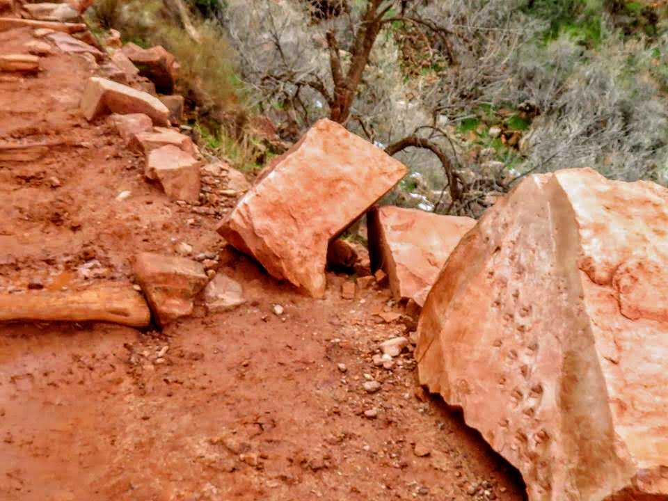 Rock with fossilized dinosaur tracks alongside Bright Angel Trail in Grand Canyon